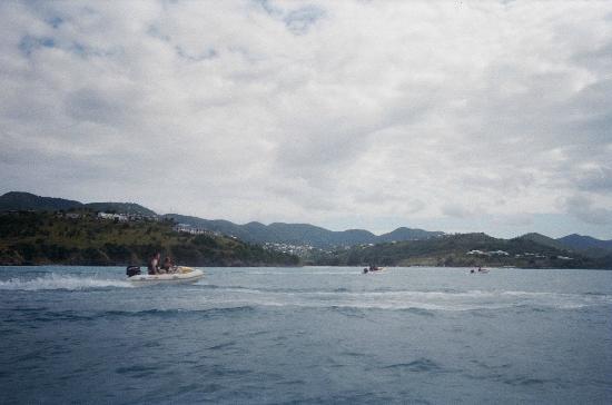 bahía de Simpson, St. Maarten: Get your Rhino on!