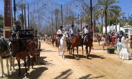 Feria del Caballo: Paseo caballos