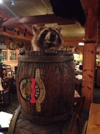 Bugaboo Creek Steak House Bangor Restaurant Reviews