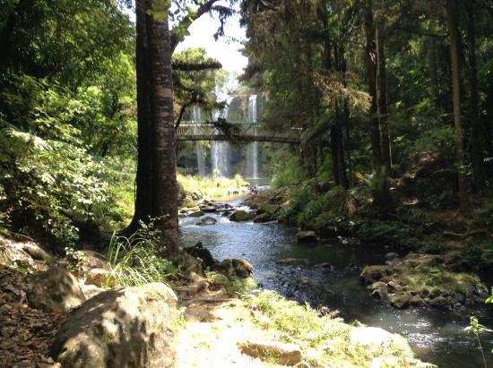 Whangarei, Nueva Zelanda: Almost there
