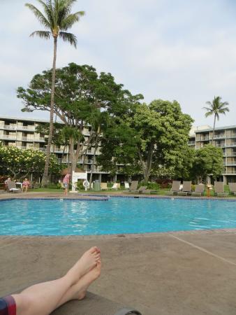 Kaanapali Beach Hotel View Of Pool Picture Of Ka Anapali Beach Hotel Maui Tripadvisor