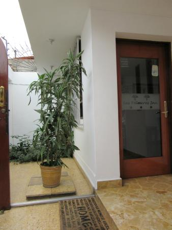 Las Palmeras Inn : Terraza