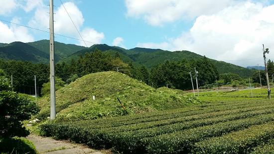 Ikeda-cho, Japan: 池田山