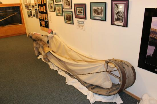 Carmacks, Canada: Dog sled and interesting photo collection