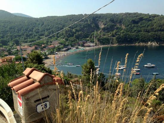 Residence Hotel Villa Mare : BAIA DI BAGNAIA VISTA DALL'ALTO