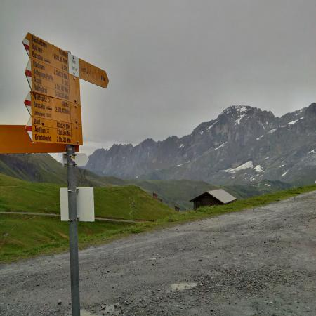Grindelwald, Svizzera: Rock wall structures, you can just imagine how they were formed by tectonic plate movement