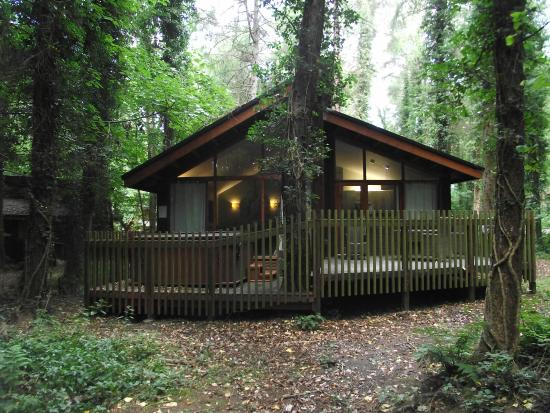 Cabin 52 Picture Of Forest Holidays Forest Of Dean Gloucestershire Christchurch Tripadvisor