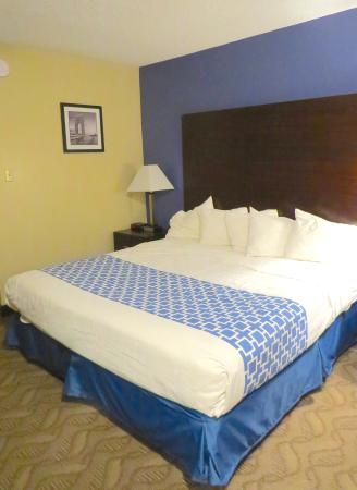 Days Inn & Suites Cherry Hill - Philadelphia: Our pretty room (I love blue)