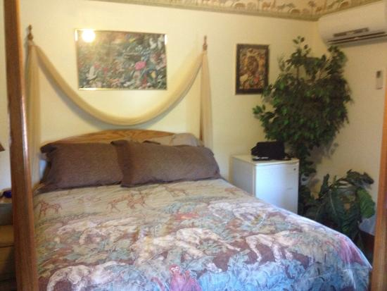Latorre House Bed and Breakfast