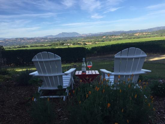 Bucher Vineyards