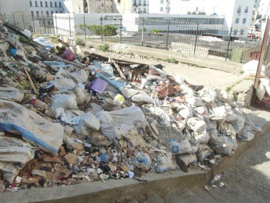 Algiers, Algieria: As mulas do lixo estavam em greve (sic)
