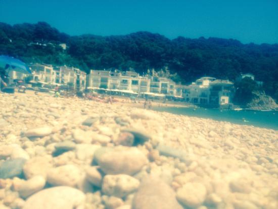 Hotel la caleta de Tamariu: Playa de Tamariu