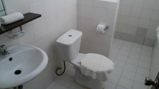 Blue Bayou Bungalows: Shower / toilet