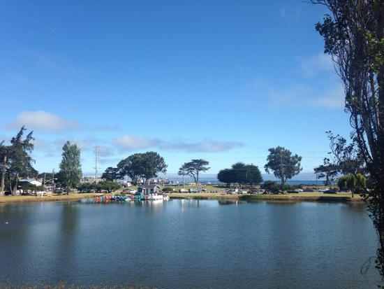 Monterey Bay Lodge Photo