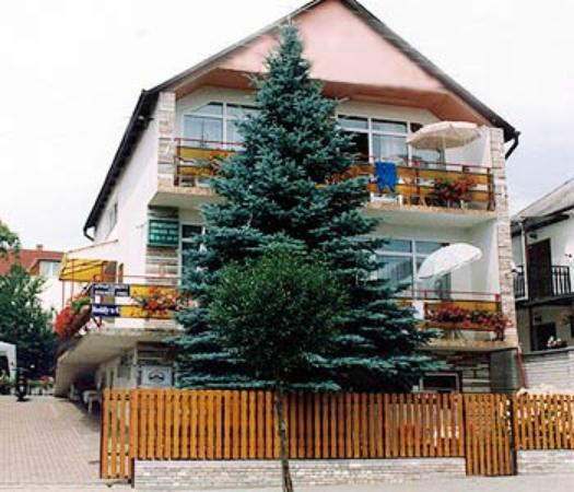 Photo of Apartment Pension Rideg Heviz