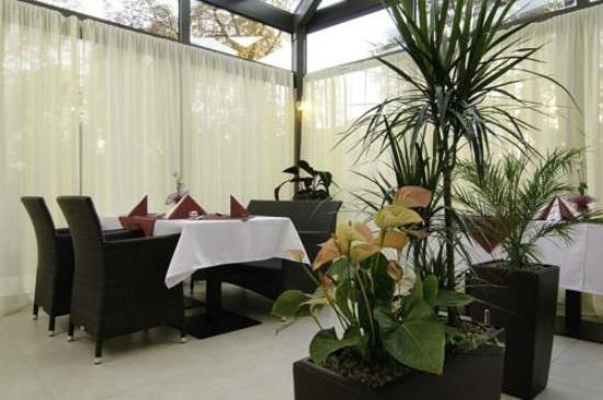 Penzion Central Park : Winter garden