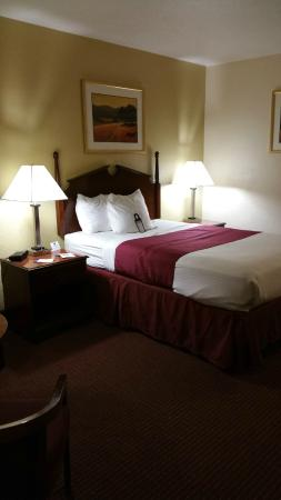Baymont Inn & Suites Effingham : Bed and night stands