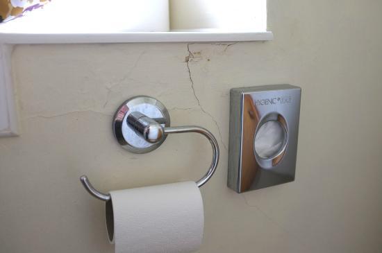 Northover Manor Hotel: State of plasterwork in bathroom