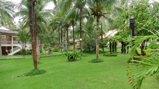 Saigon Mui Ne Resort : Территория