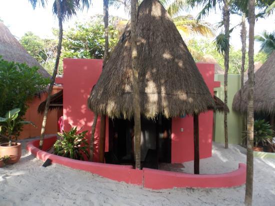 La Zebra Colibri Boutique Hotel: #7