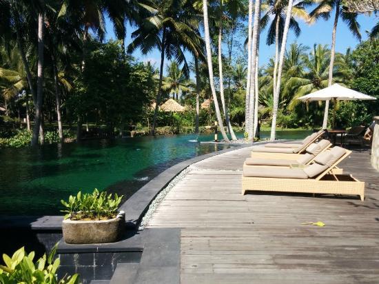 Ubud Village Resort And Spa Tripadvisor Reviews