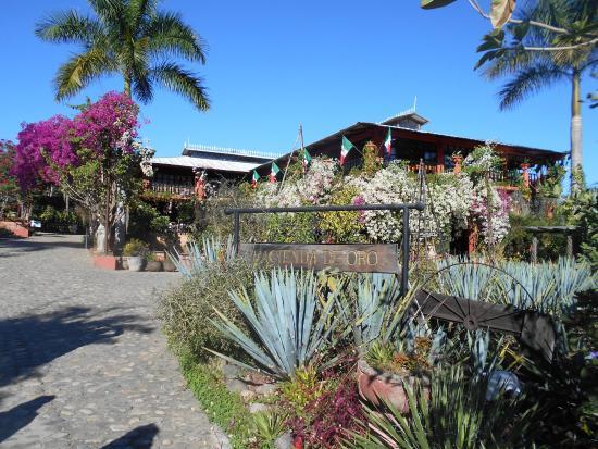 View down from the restaurant swim in the river below - Puerto vallarta botanical gardens ...