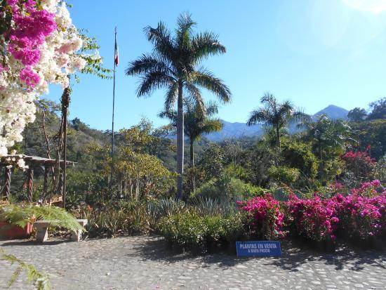 Vallarta adventures visit to botanical gardens picture - Puerto vallarta botanical gardens ...