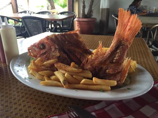 Red Fish Best Local Restaurant In Aruba The Food Ia Excellent A