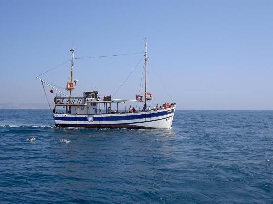 Amodou Cheval: Boat trip agadir