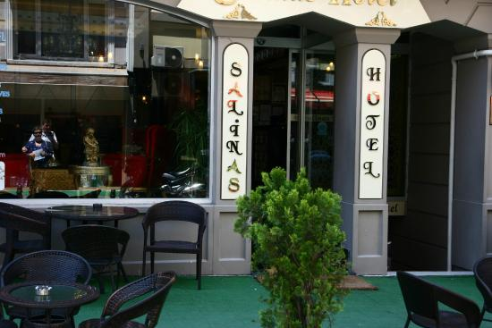 Salinas Istanbul Hotel : Вход