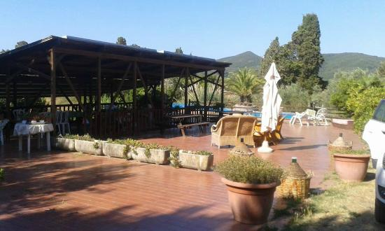 Agriturismo Pane e Vino: piscina e area relax