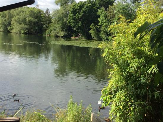 York Lakeside Lodges: View from Holly lodge
