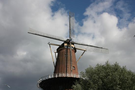 Korenmolen Rijn en Zon