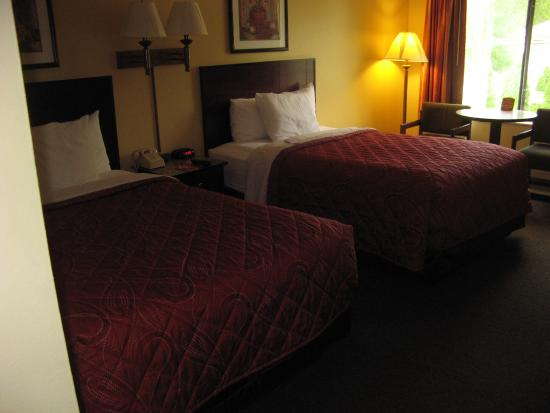 Econo Lodge - Mayo Clinic Area: Room 242