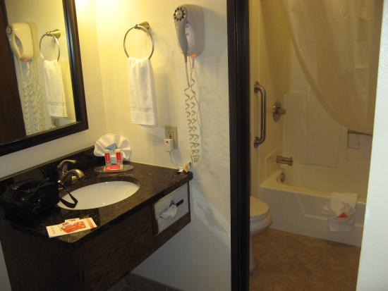Econo Lodge - Mayo Clinic Area: Bathroom