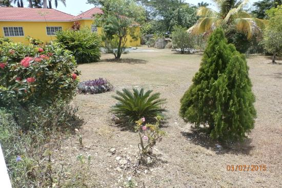 Mammee Bay, Jamaika: Beautiful grounds of Villa Loyola