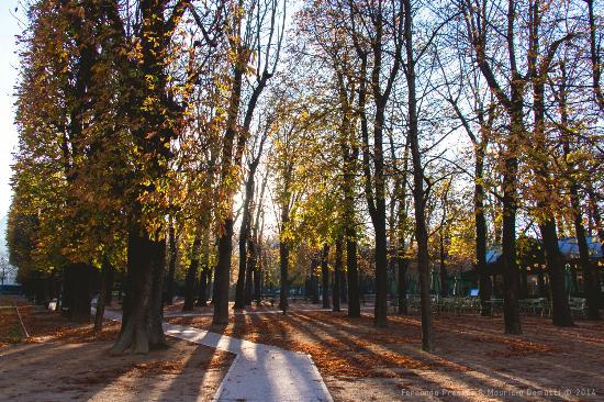 Paryż, Francja: Jardim