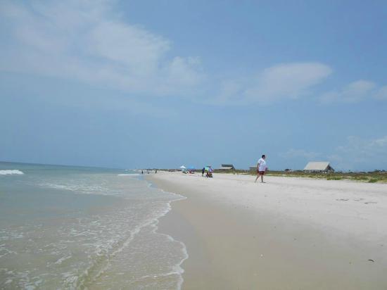 Saint George Island State Park: Great beach