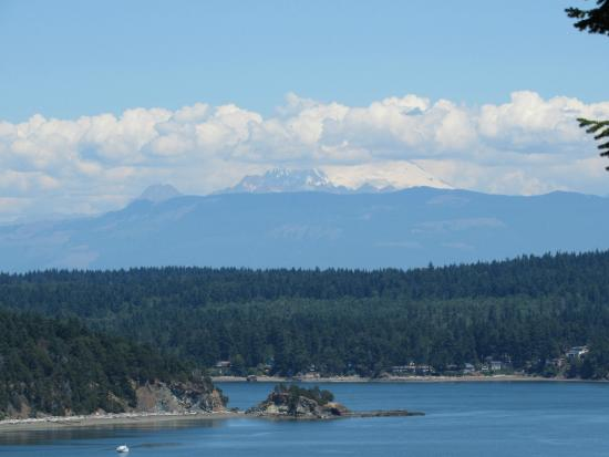 The Bluff on Whidbey: View standing on the bluff behind the B&B