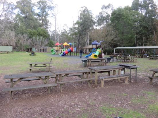 Australian Rainbow Trout Farm: Picnic area & play ground