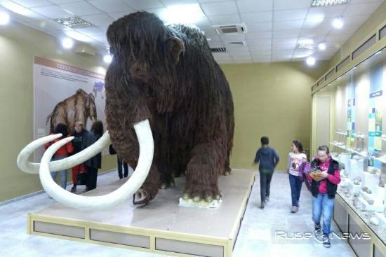 Eco Museum & Aquarium