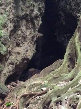 Bloody River: Entrance of the bat cave