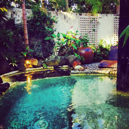 Buddha Gardens Day Spa: photo0.jpg