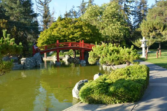 Japanese friendship garden with mostly grass and other for Japanese friendship garden