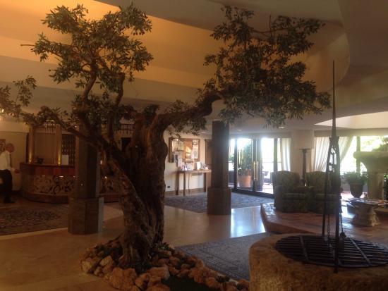 Roseo Hotel Assisi - Foto di Grand Hotel Assisi, Assisi - TripAdvisor