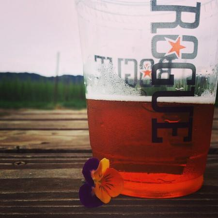Rogue Farms Micro Hopyard : Hops for days