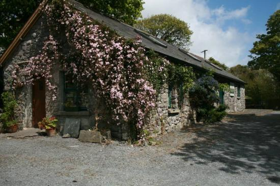 Burren Fine Wine and Food: Our Centery Old Stone Coach Home