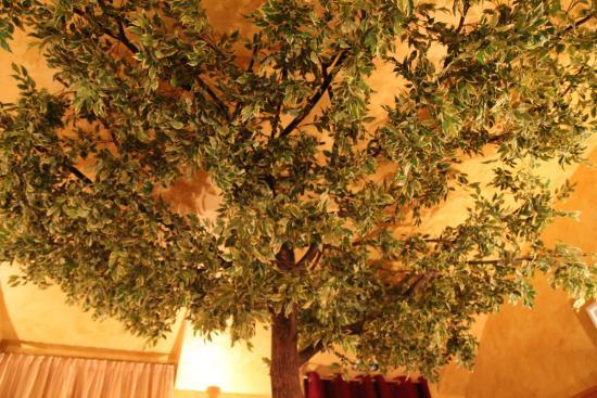 Gasthaus am Spittelberg: Under the tree )