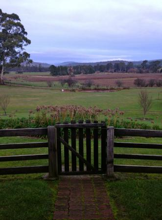 Duffy's Country Accommodation: View out the front gate - daytime
