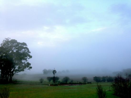 Duffy's Country Accommodation : Morning mist over the farm